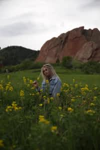 Field of Flowers field stories