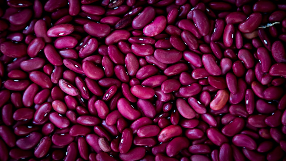 purple bean lot