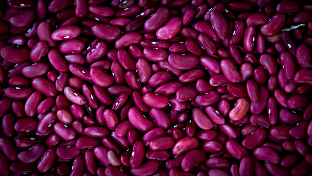 Close up purple beans background, purple beans seeds