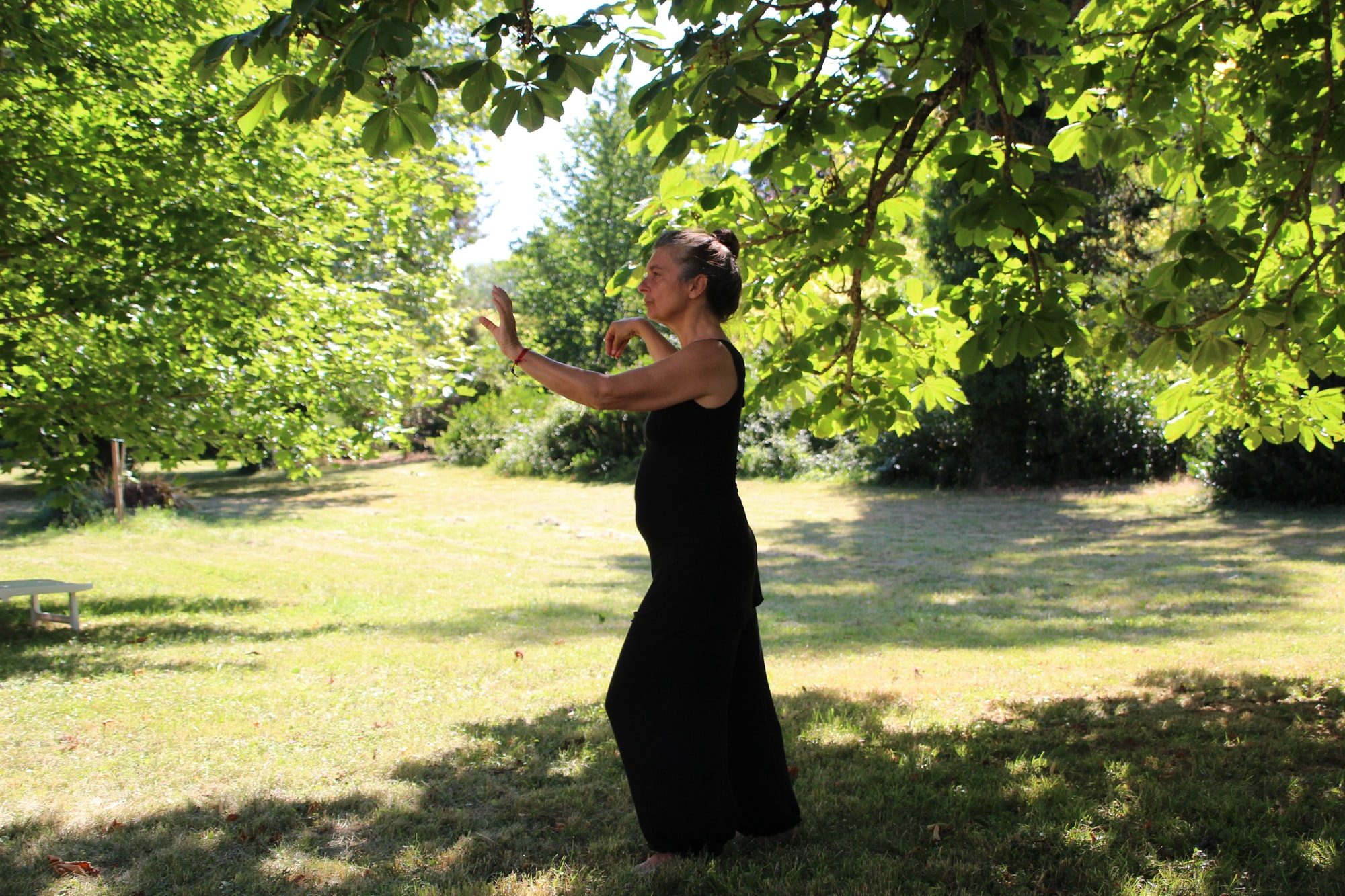 taichi master performence in the garden under a tree