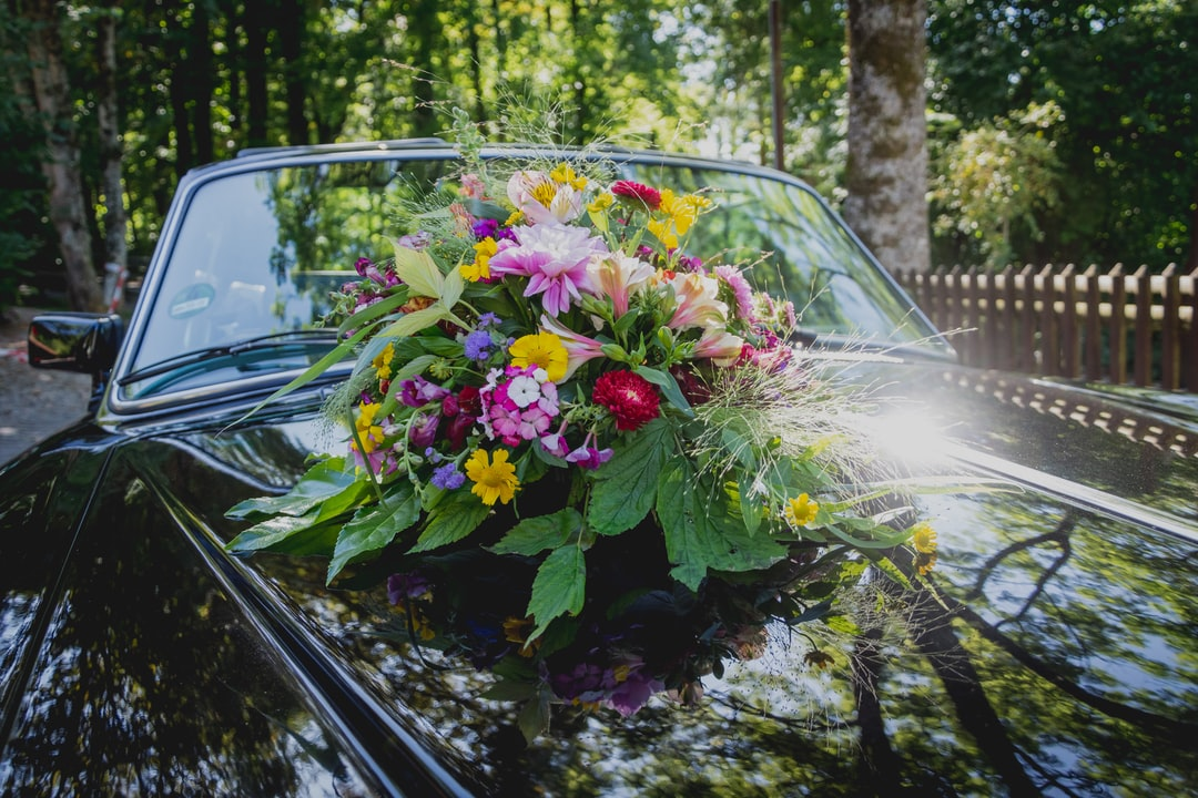 Pink and White Flowers On Black Car - unsplash