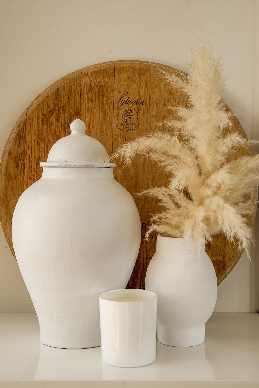 white and brown plant in white ceramic vase