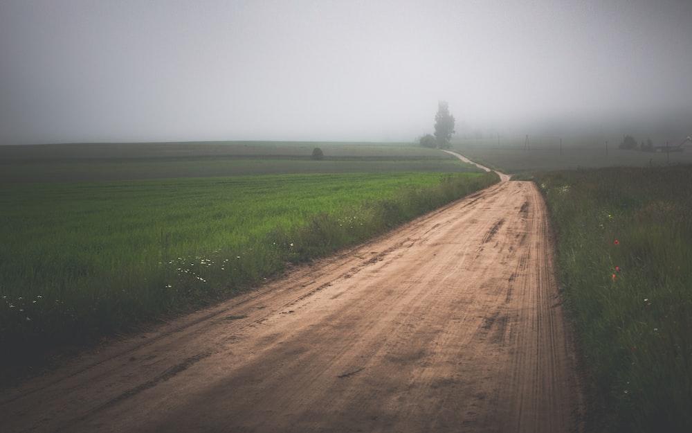 brown dirt road between green grass field under gray sky