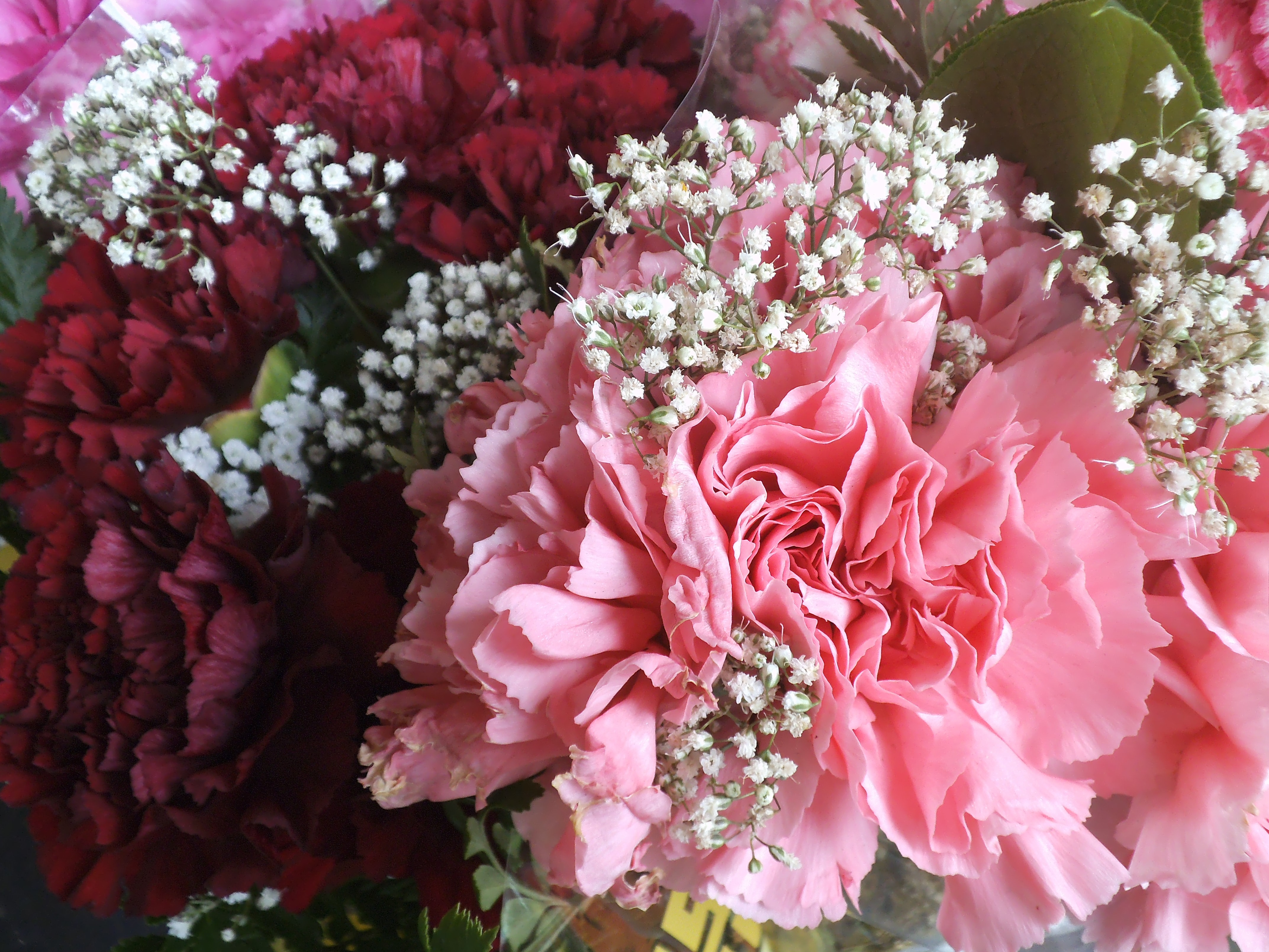 pink and red petal flowers bouquet