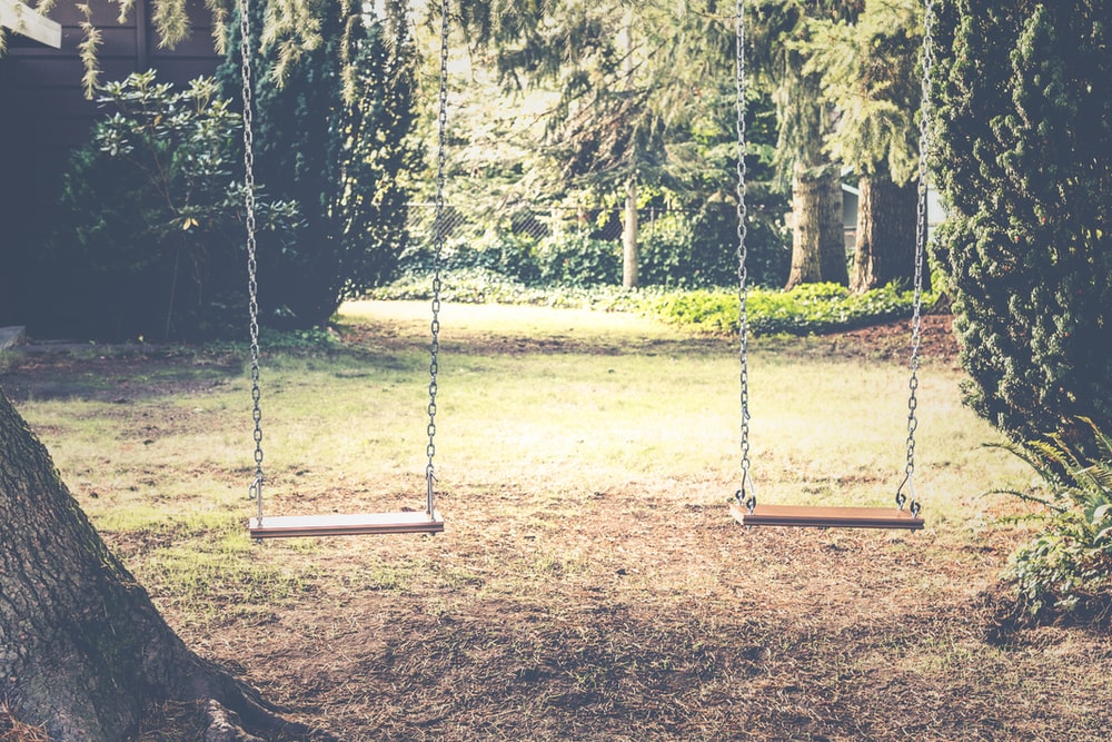 photograph of empty swings between trees