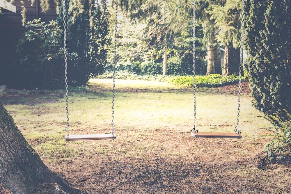 photograph of empty swings between trees