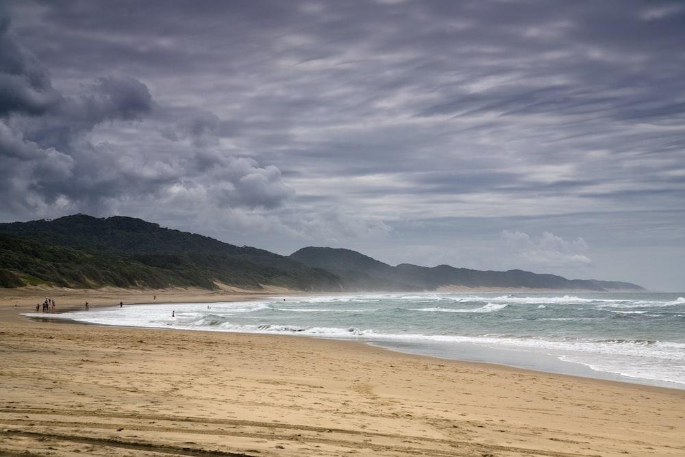 photo of people walking in seashore