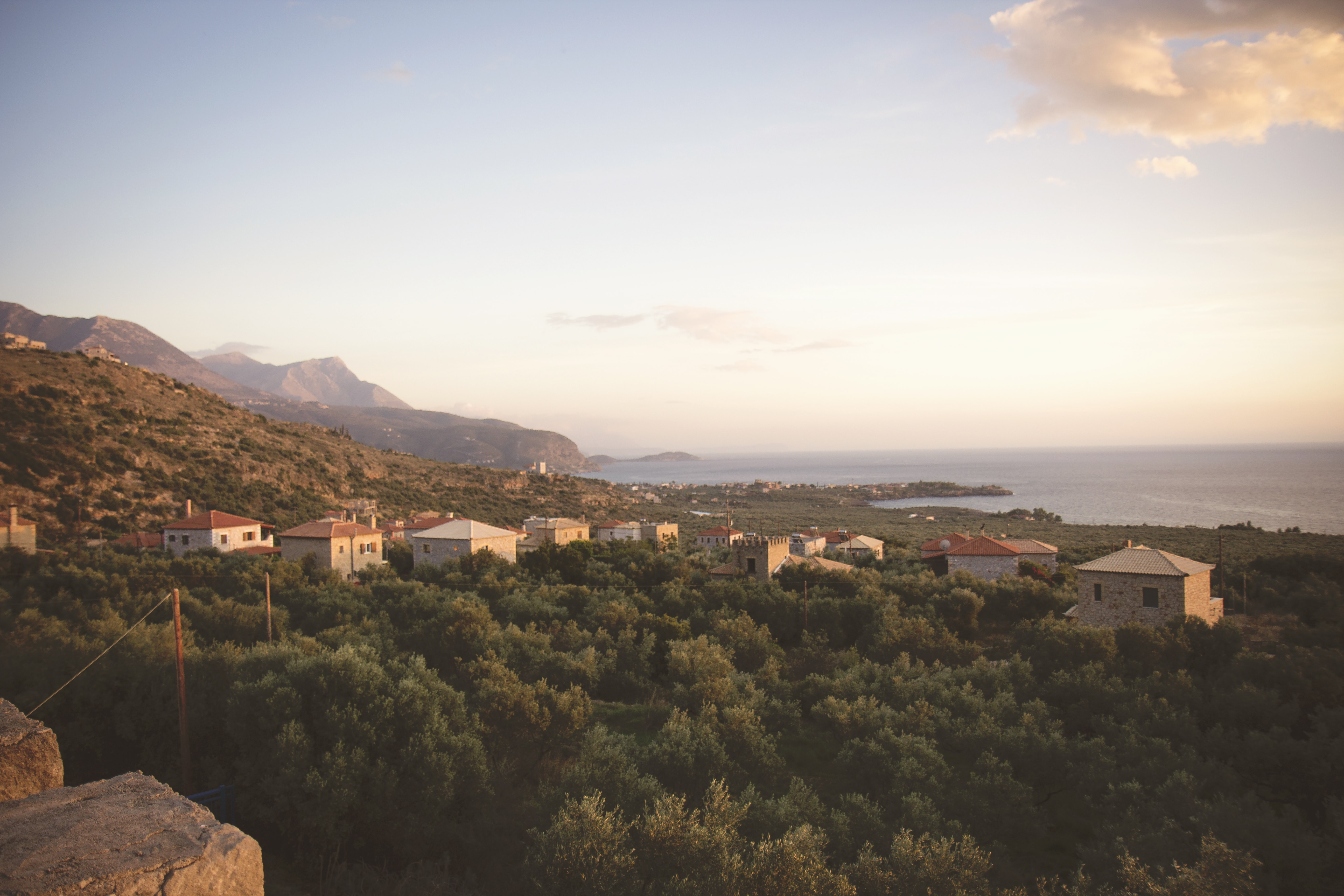 A picturesque landscape with small houses between thick shrubs on the sea coast