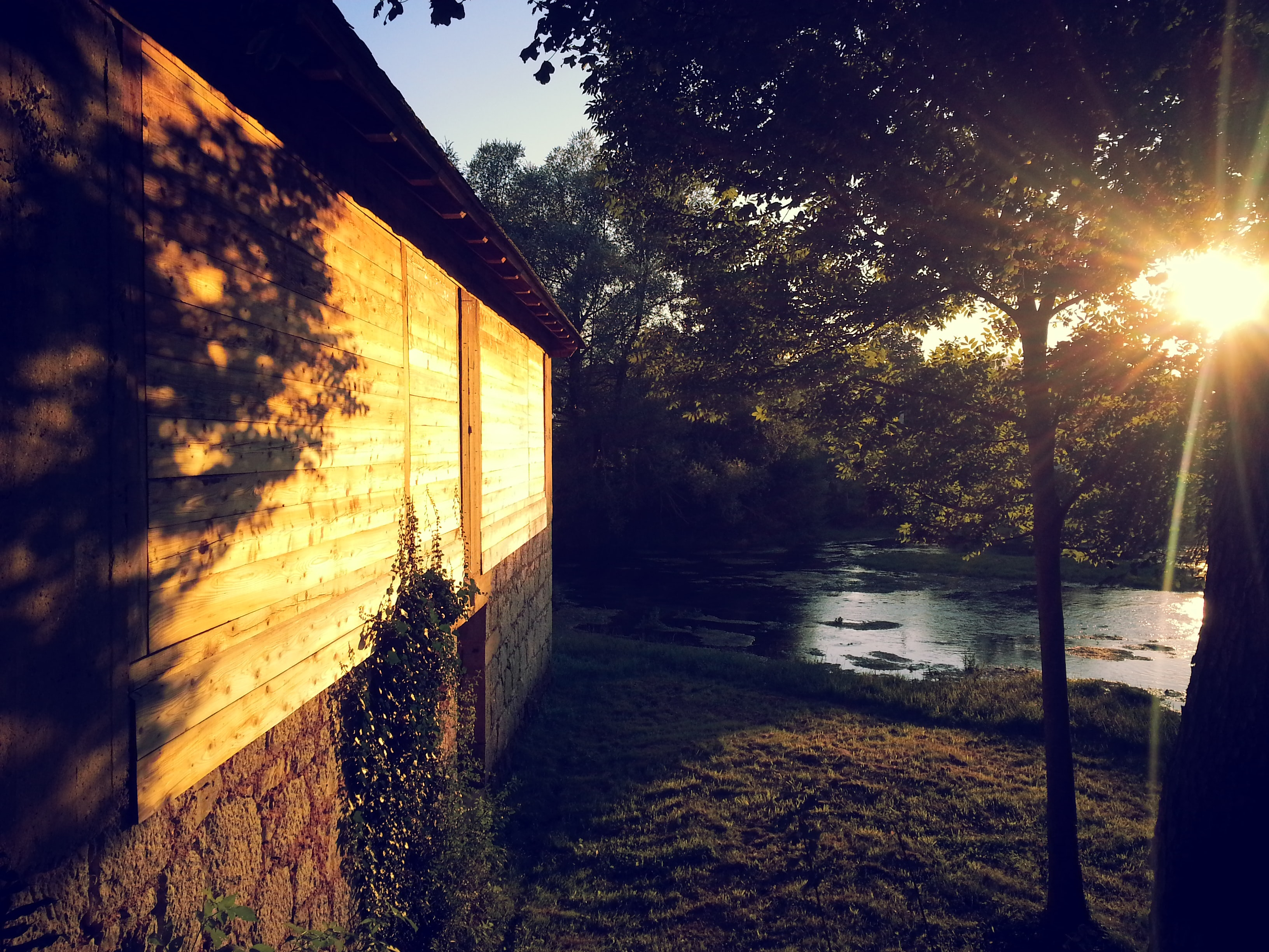 Evening sun over trees near a river and a house