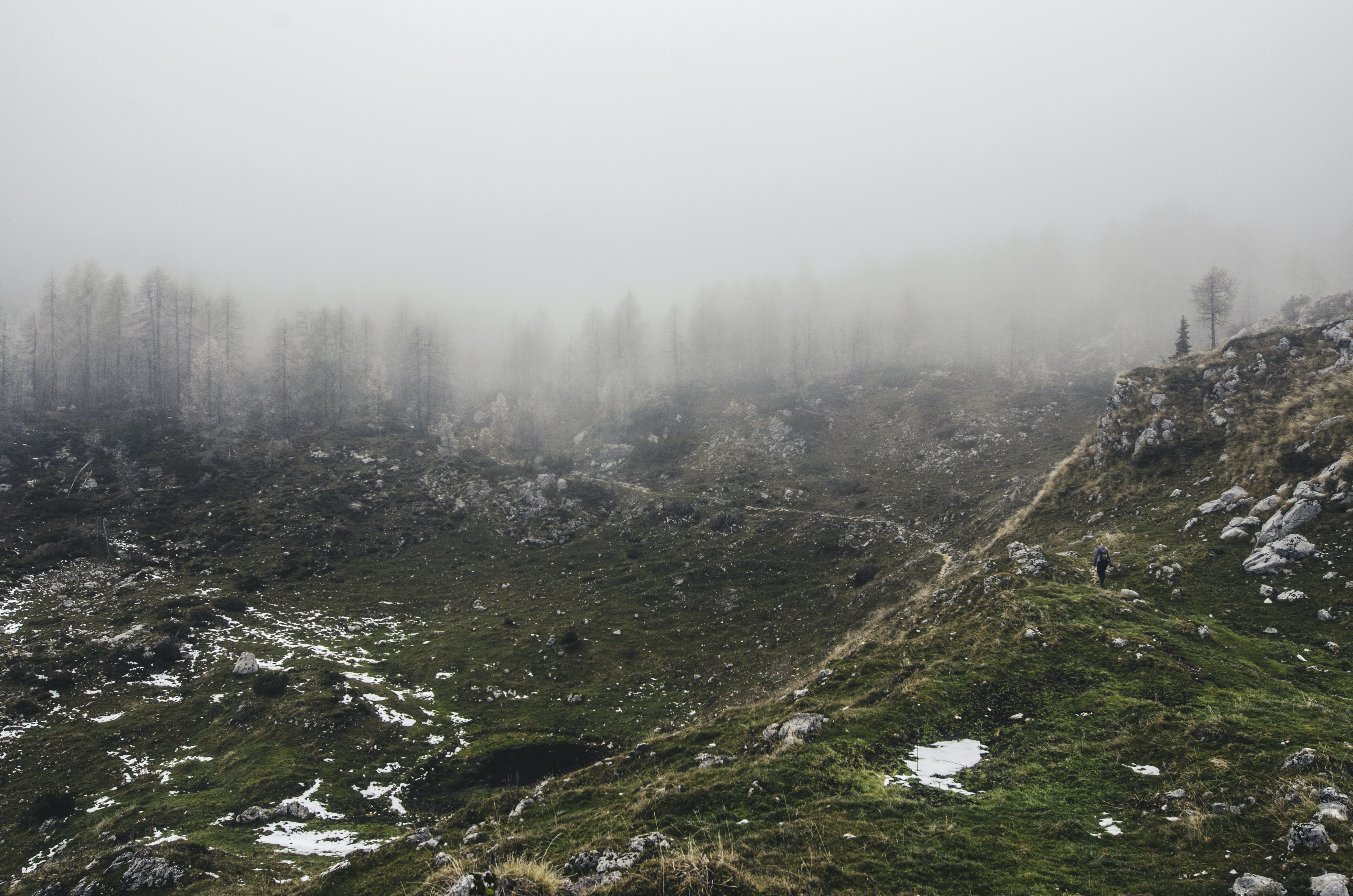 A lone hiker in a barren hilly landscape with snow-covered trees on the horizon