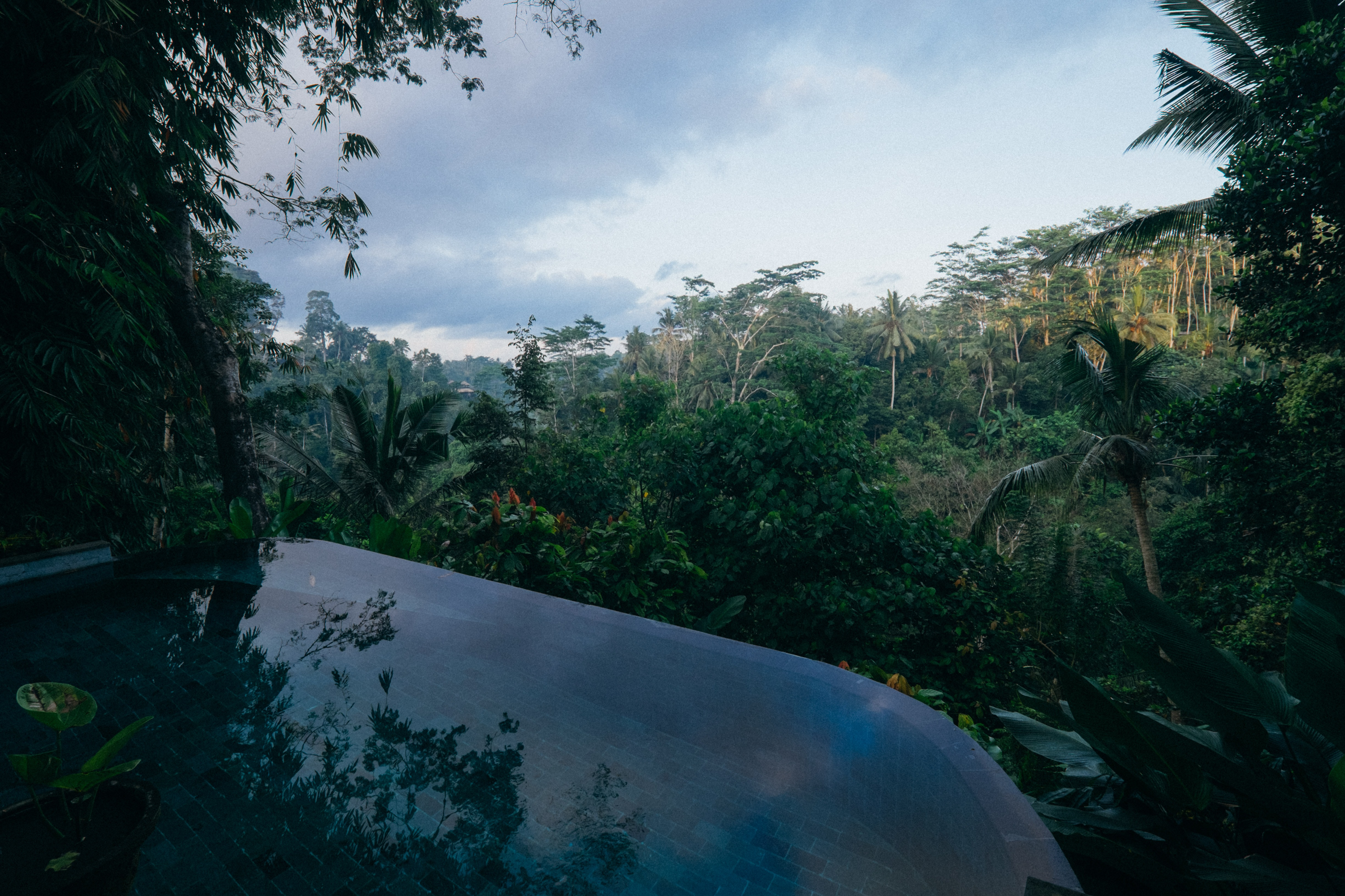 Serene jungle view from a relaxing spa