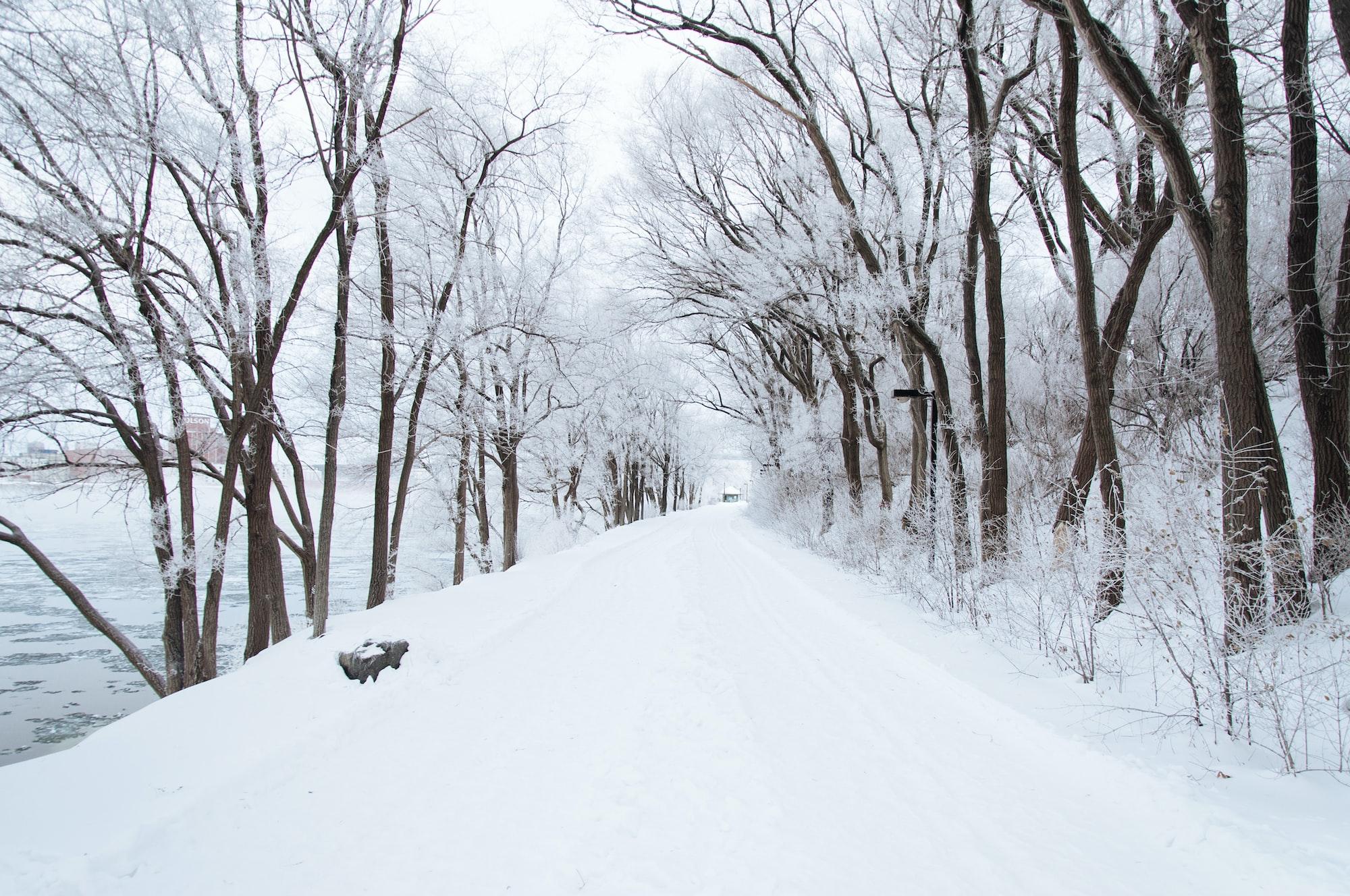 Students versus the winter weather