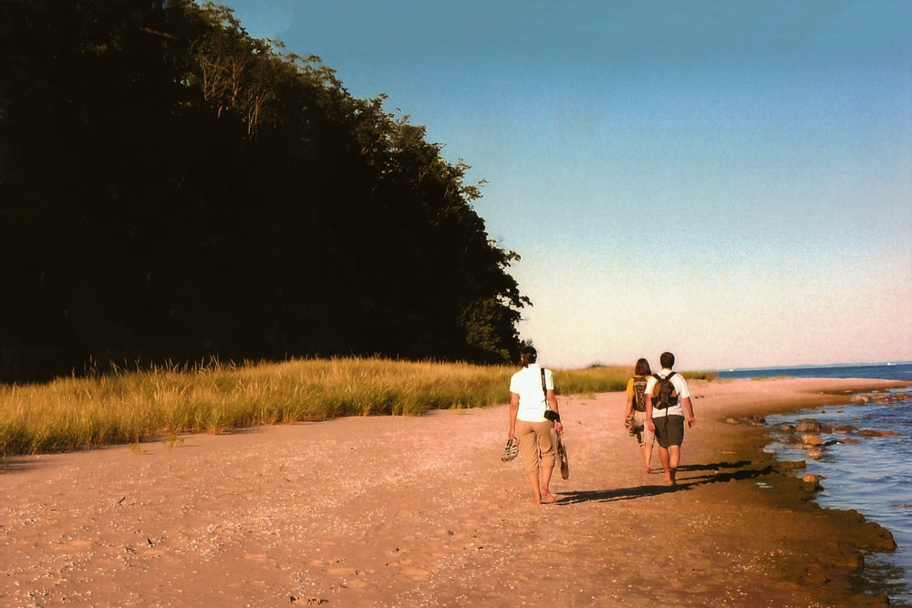 woman and two men standing on seashore beside trees