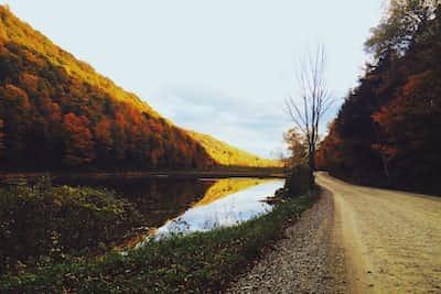 Incredible Pigmentation autumn stories