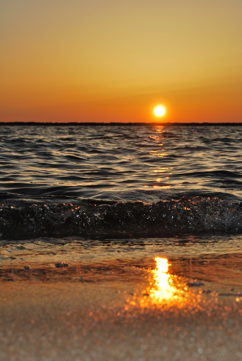 body of water wave photo during golden time