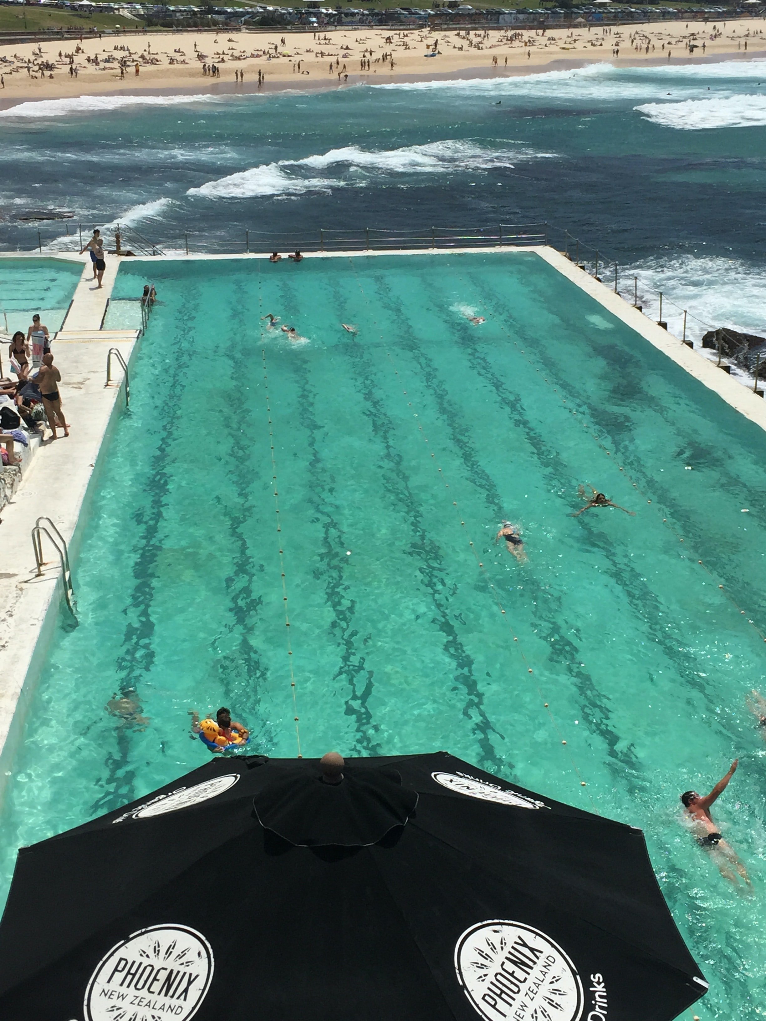 Exotic swimming pool in front of Bondi beach features fun loving people relaxing