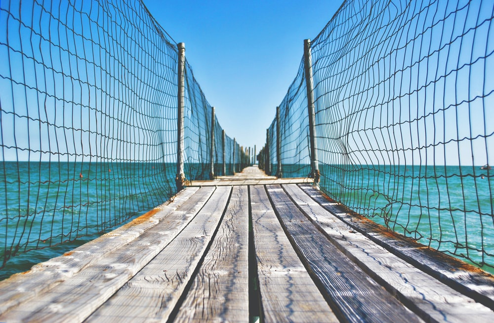 brown wooden bridge with net over body of water