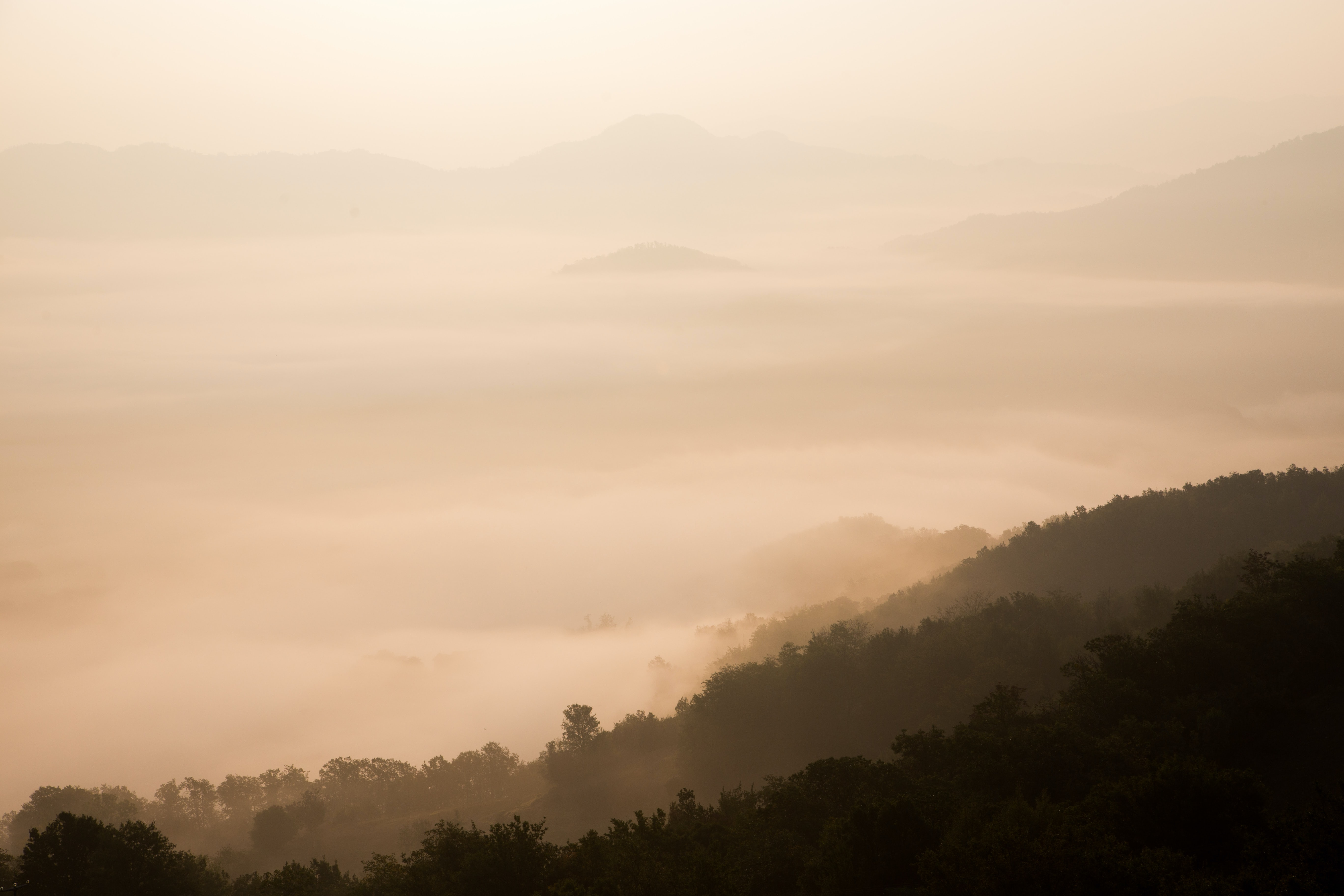 A deep mountain valley covered with a thick layer of fog