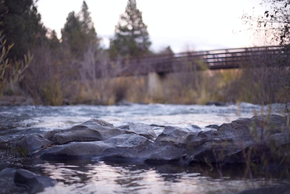 body of water near bridge during daytime