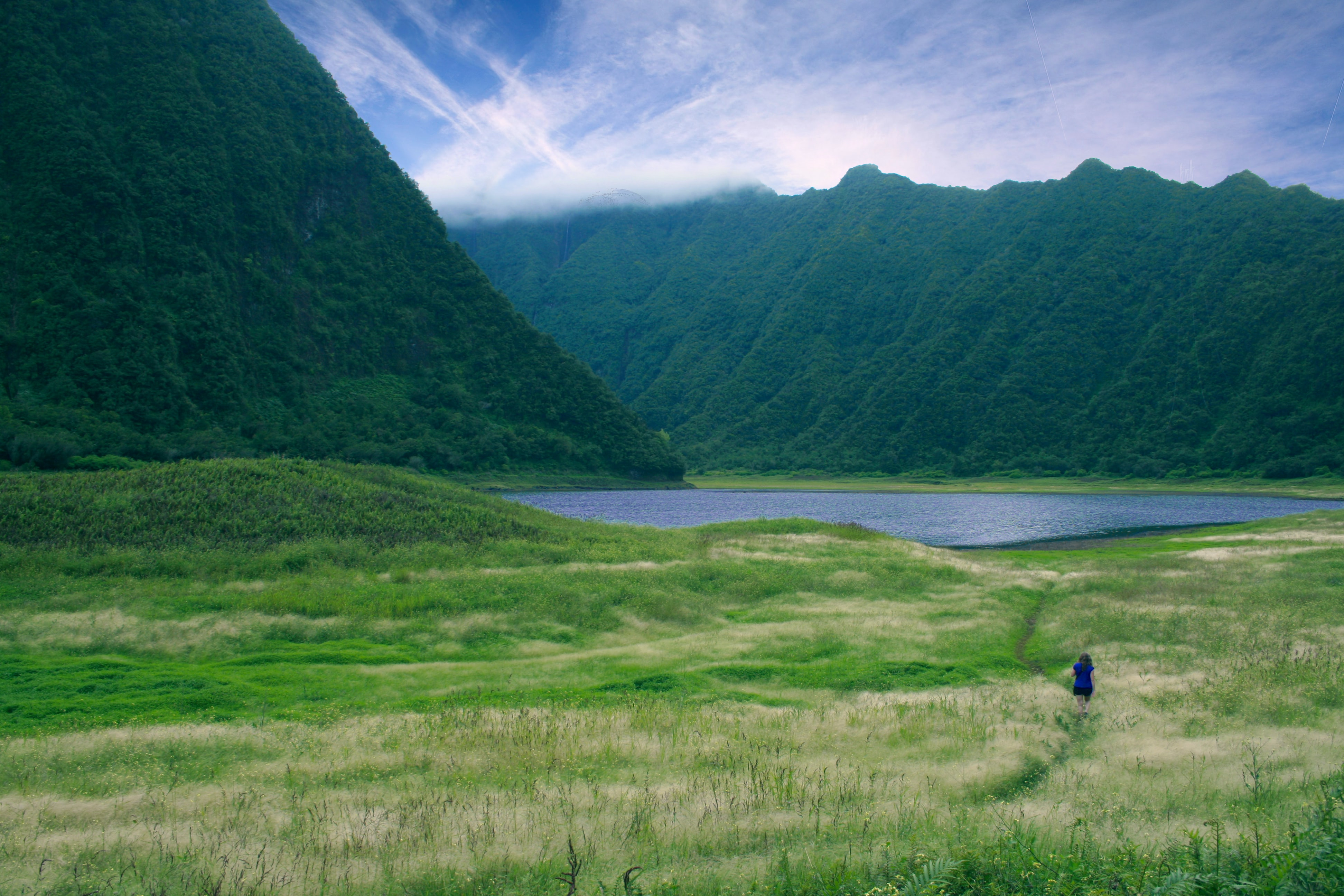 landscape photography of green valley