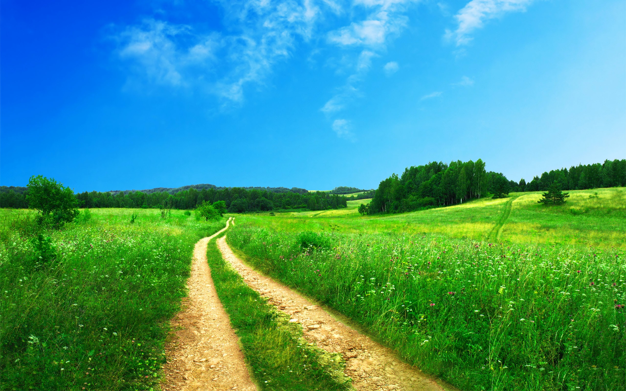 Country dirt road with beautiful scenic grassy landscape and clear blue sky in Spring