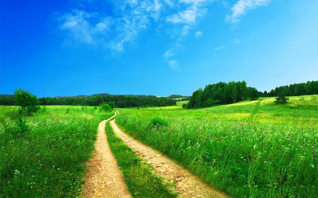 scenic-dirt-road-in-spring