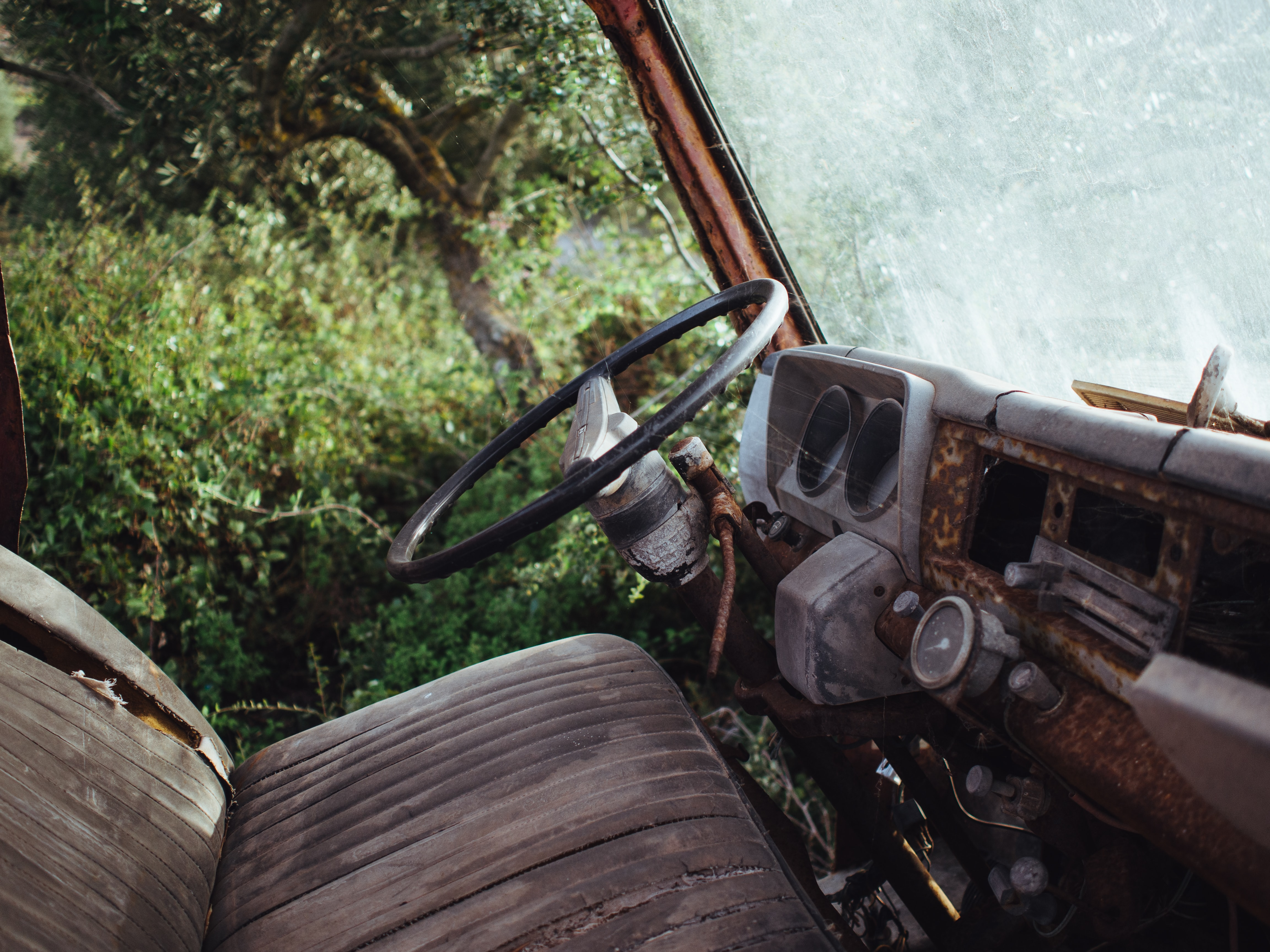 Interior shot of rusty old vehicle with worn seats parked near trees