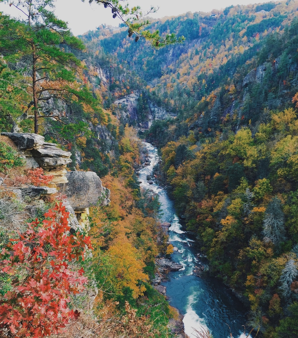 landscape photography of mountain river