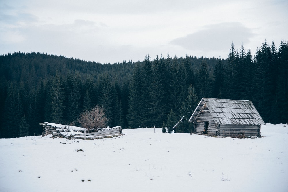 wooden cabin on snow-covered field