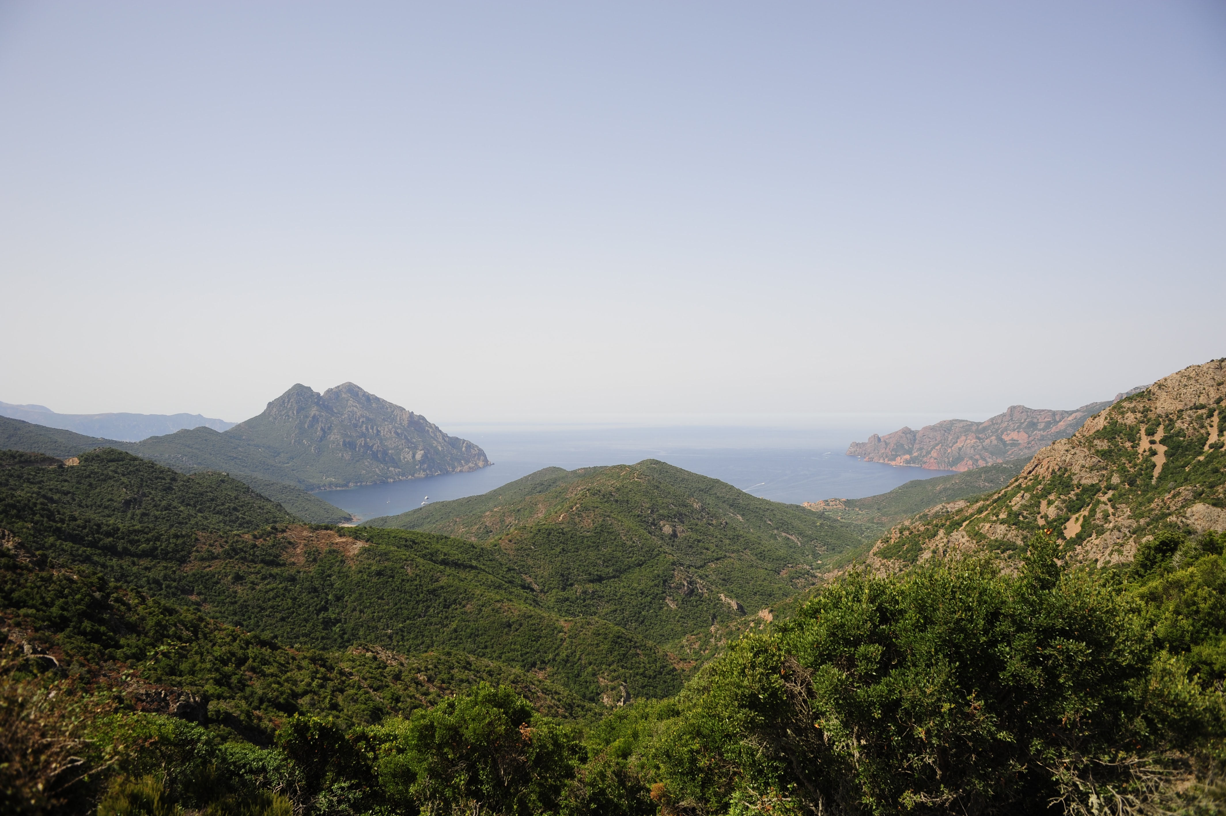 Hills covered with green shrubs along the blue coast