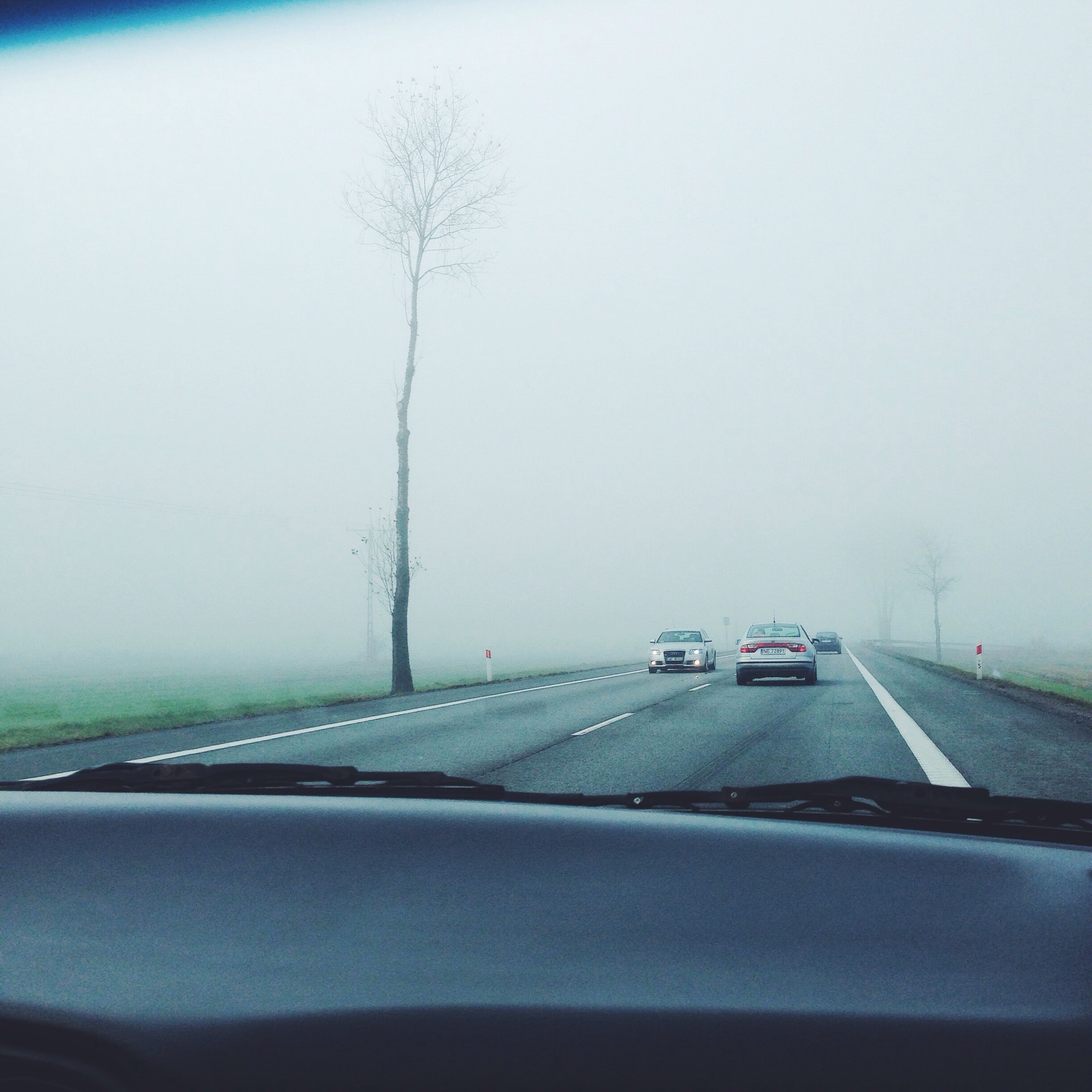 The view through a windshield on a foggy road