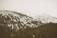 Mist on the slope