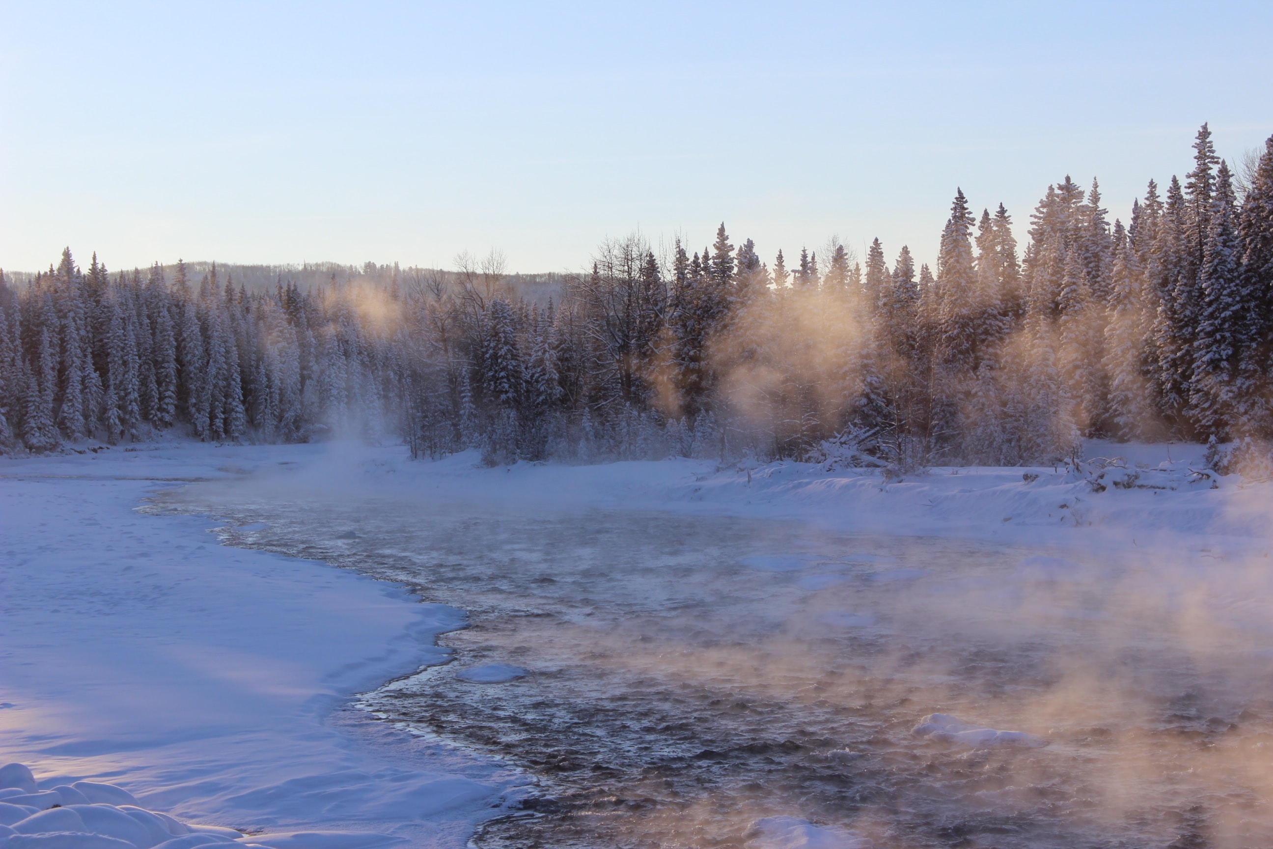 In the Absence                         of Warmth tanka stories