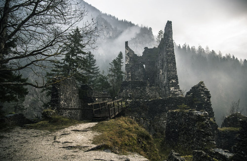 ruins near trees with fogs during daytime