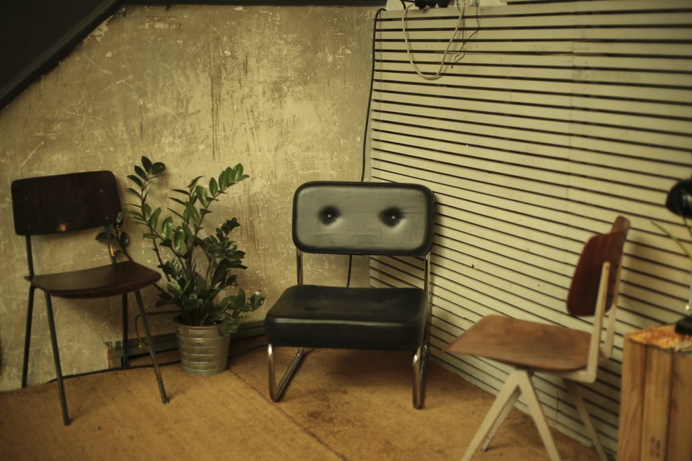 Three old chairs and a potted plant in the corner of a room