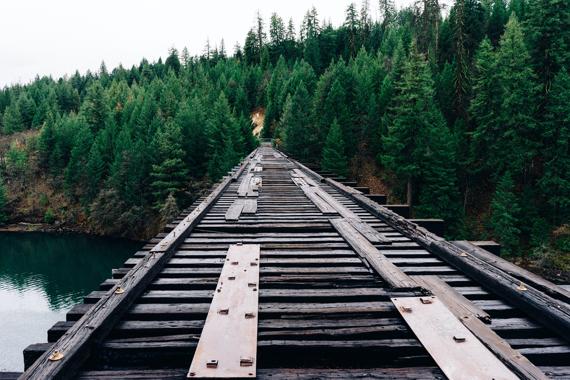 Railroad track on a bridge over water near a forest