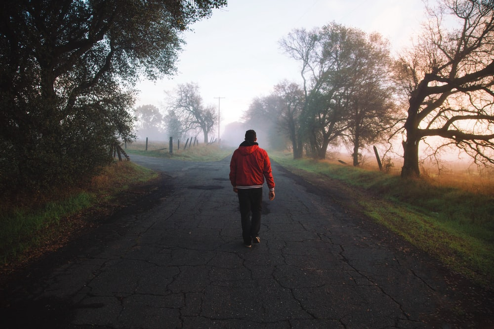 Walking alone down a foggy country road