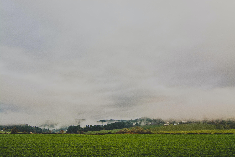 green grass field under cloudy sky