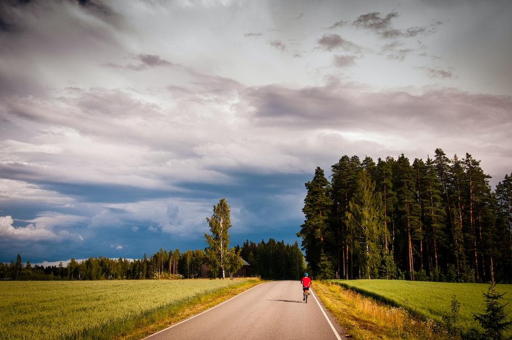 person walking on road near green trees