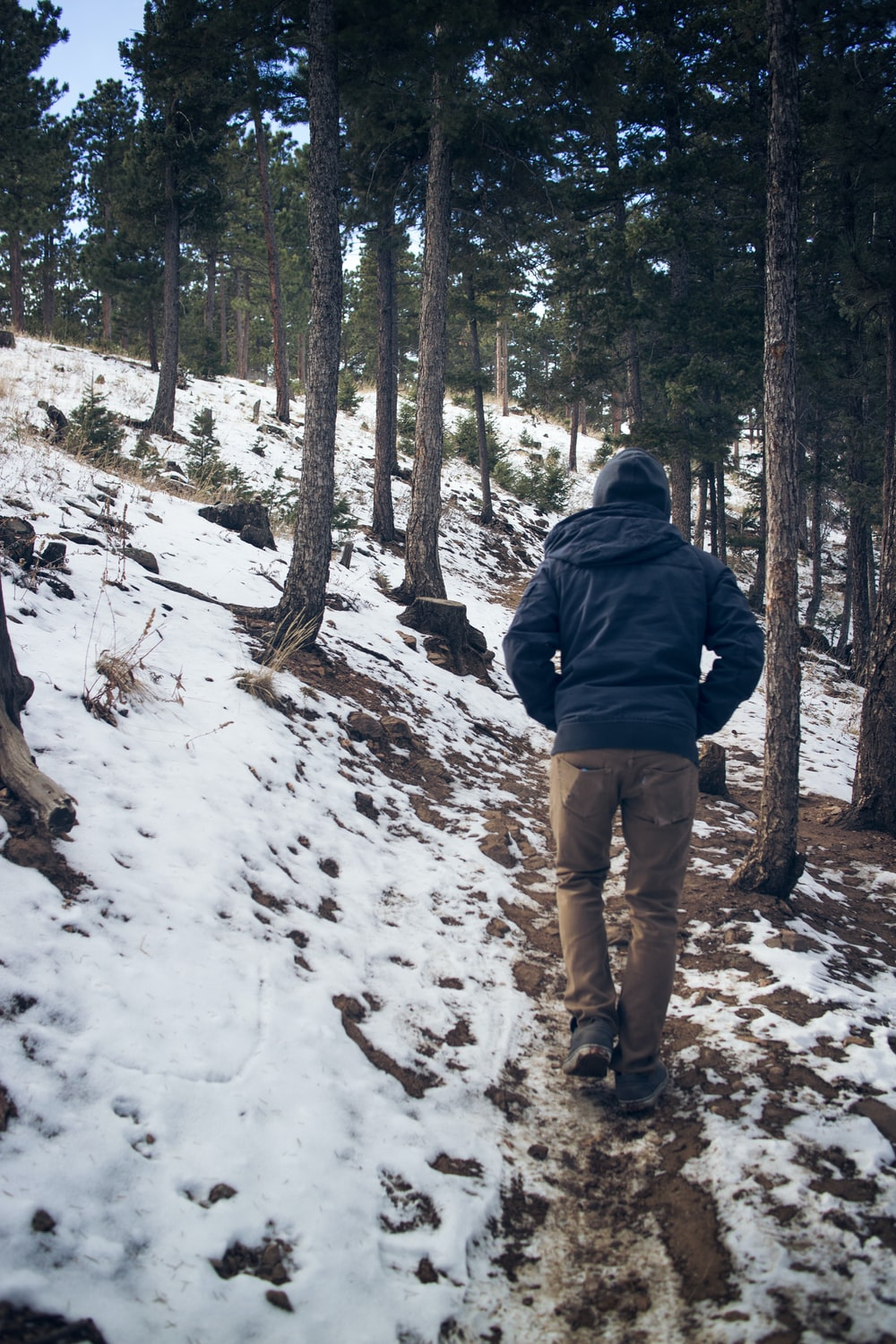 man wearing black hooded coat walking under trees with snow during winter