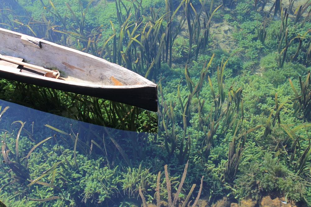 black wooden canoe on body of water