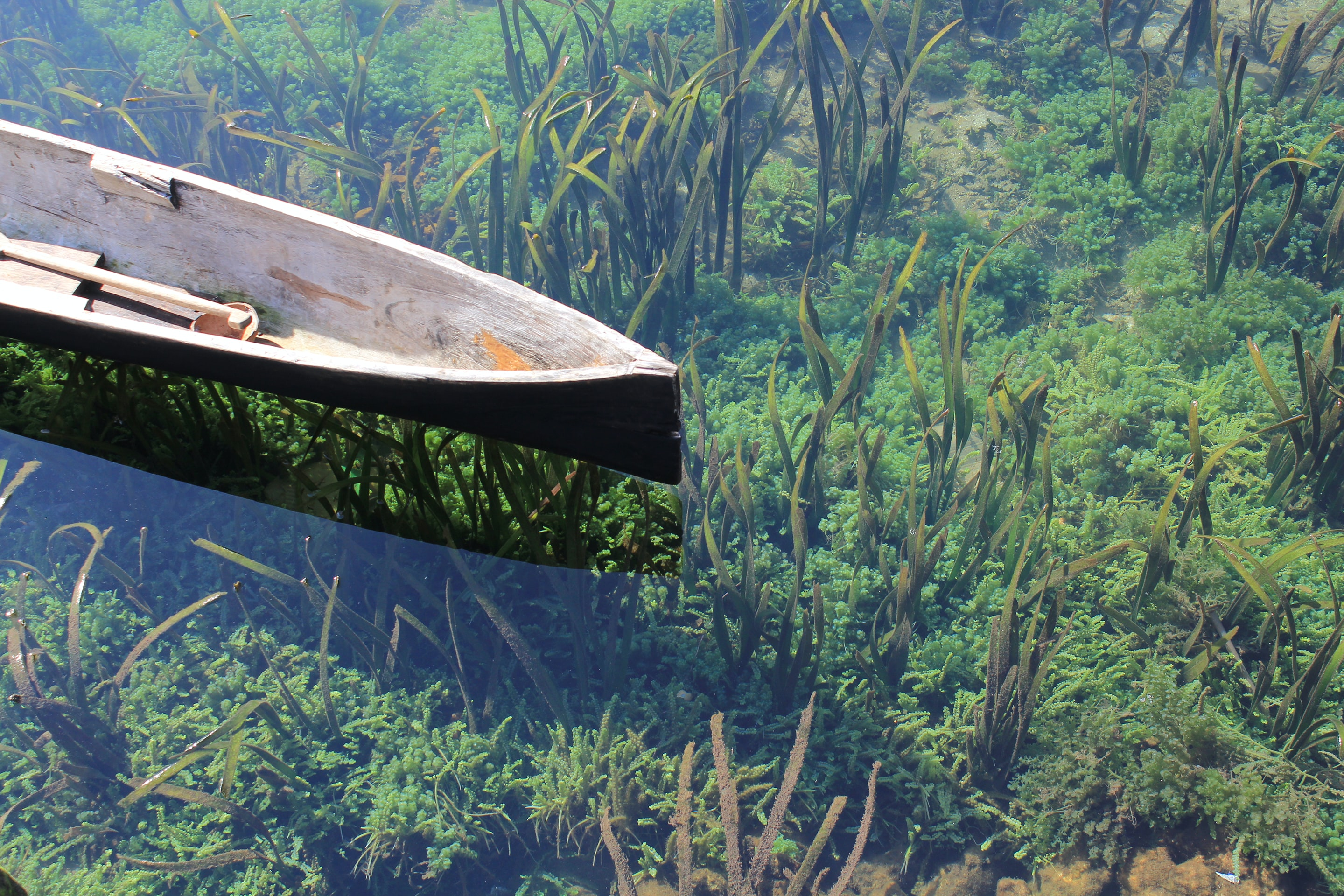 black wooden canoe on body of water