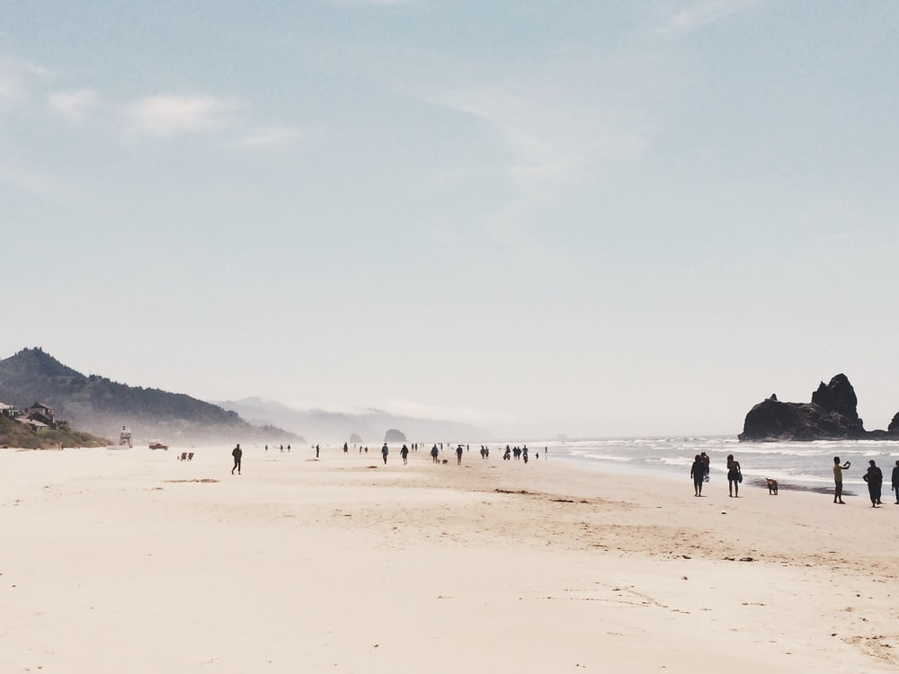 silhouette of people walking on beach shore during daytime