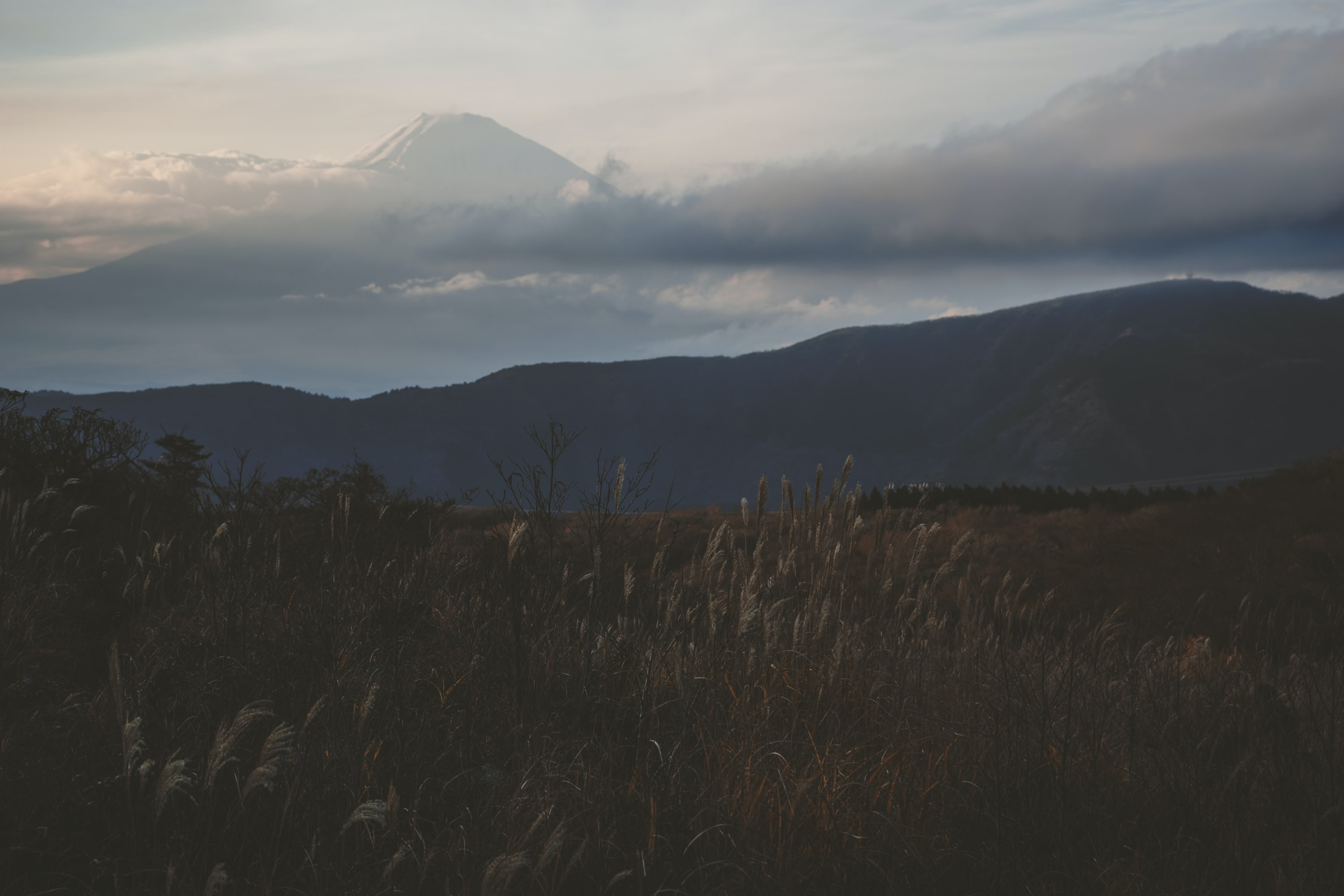 A dim shot of a grassy field with a high mountain emerging from the clouds