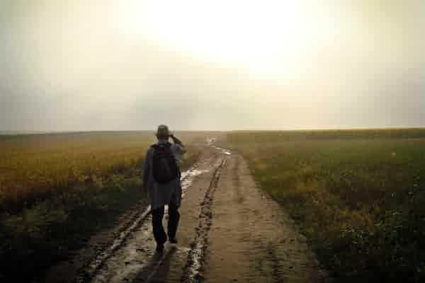 תהליכי פרידה בסיום פסיכותרפיה פסיכודינמית בטיפול בנפגע טראומה