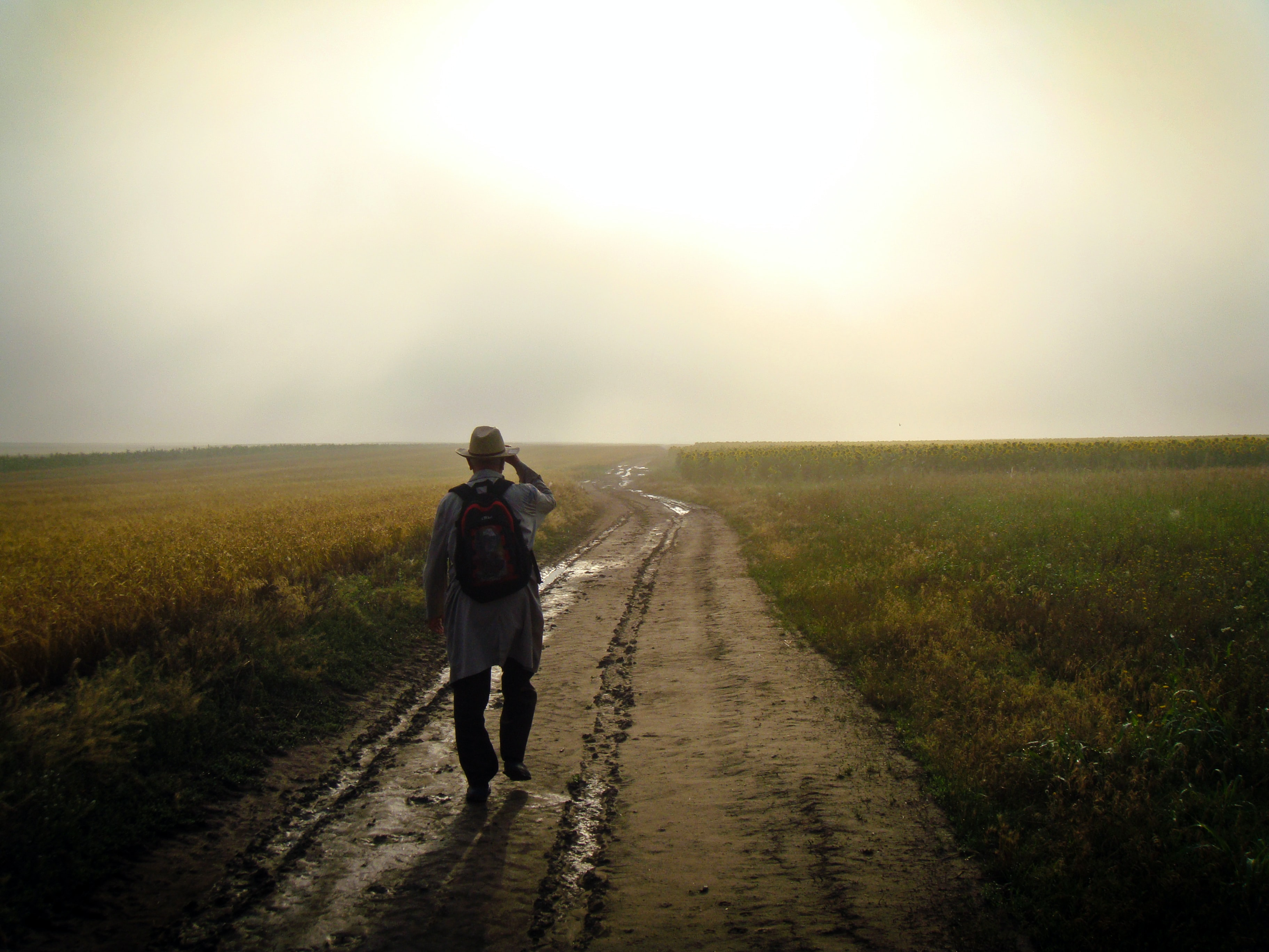 Person walks alone on a rural trail through the countryside