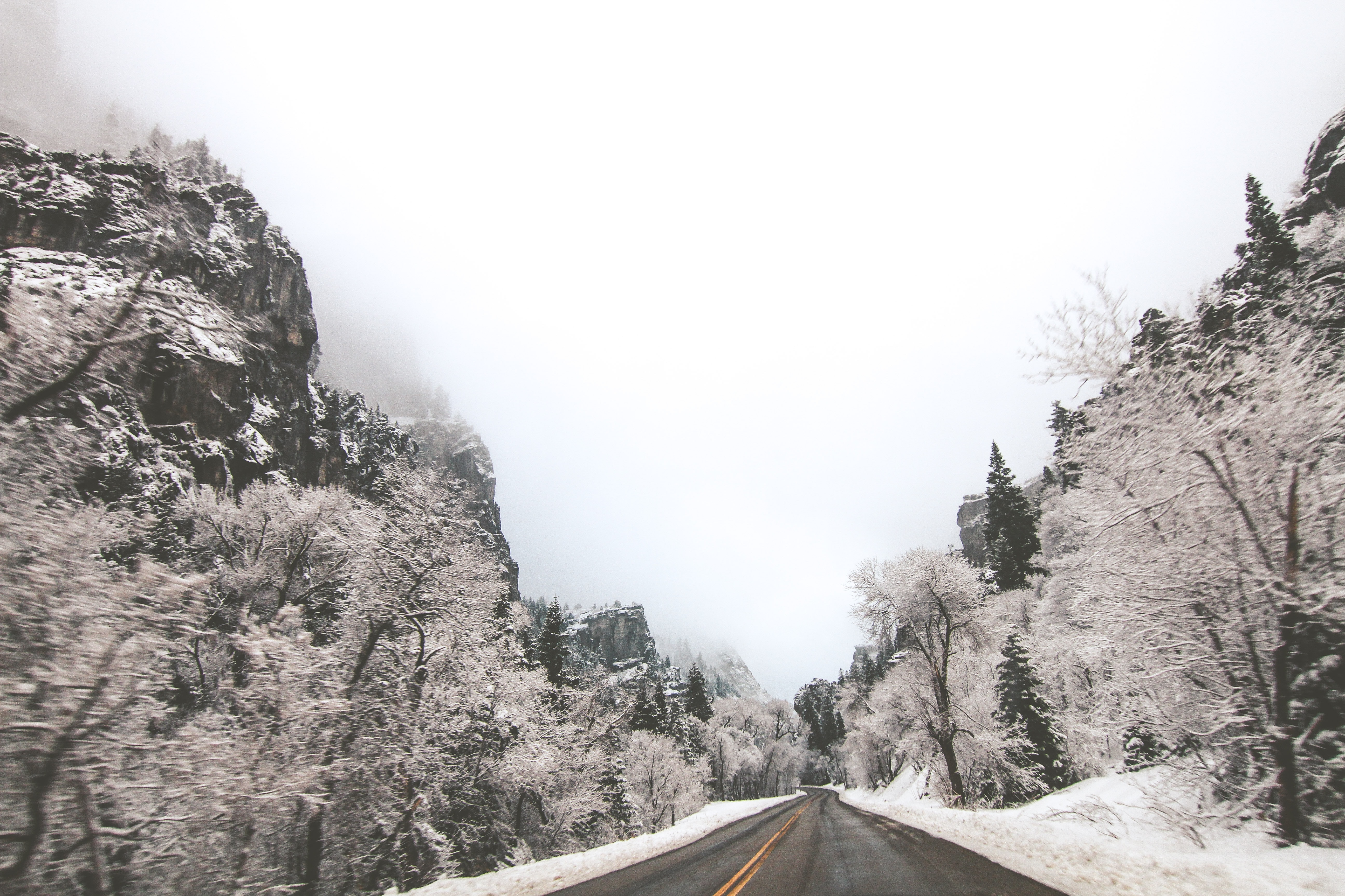 Open road lined with frosty winter trees