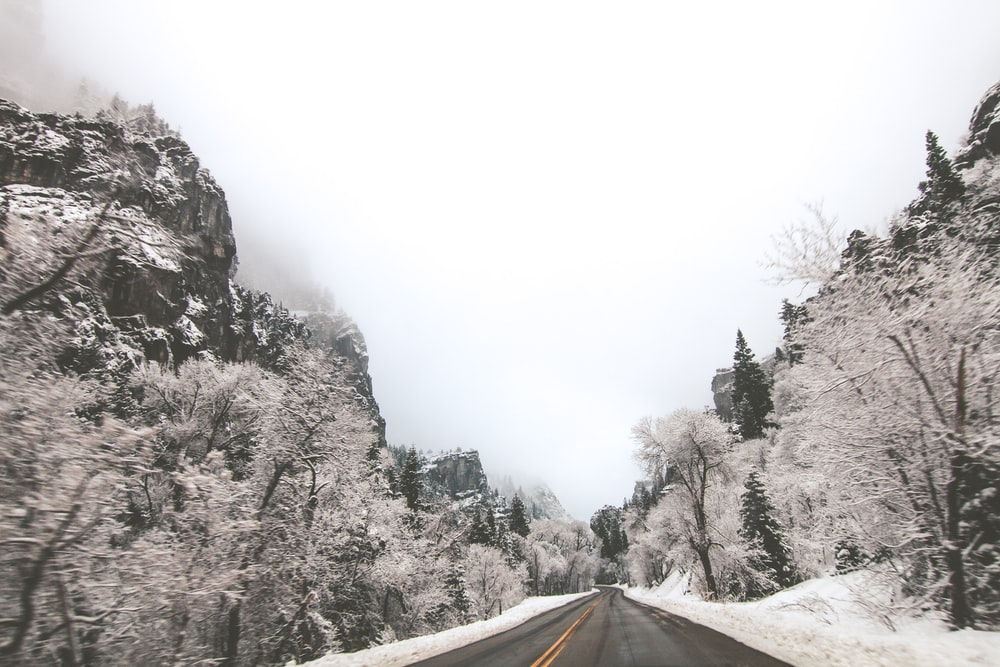 landscape photography of road in the middle of mountains and trees