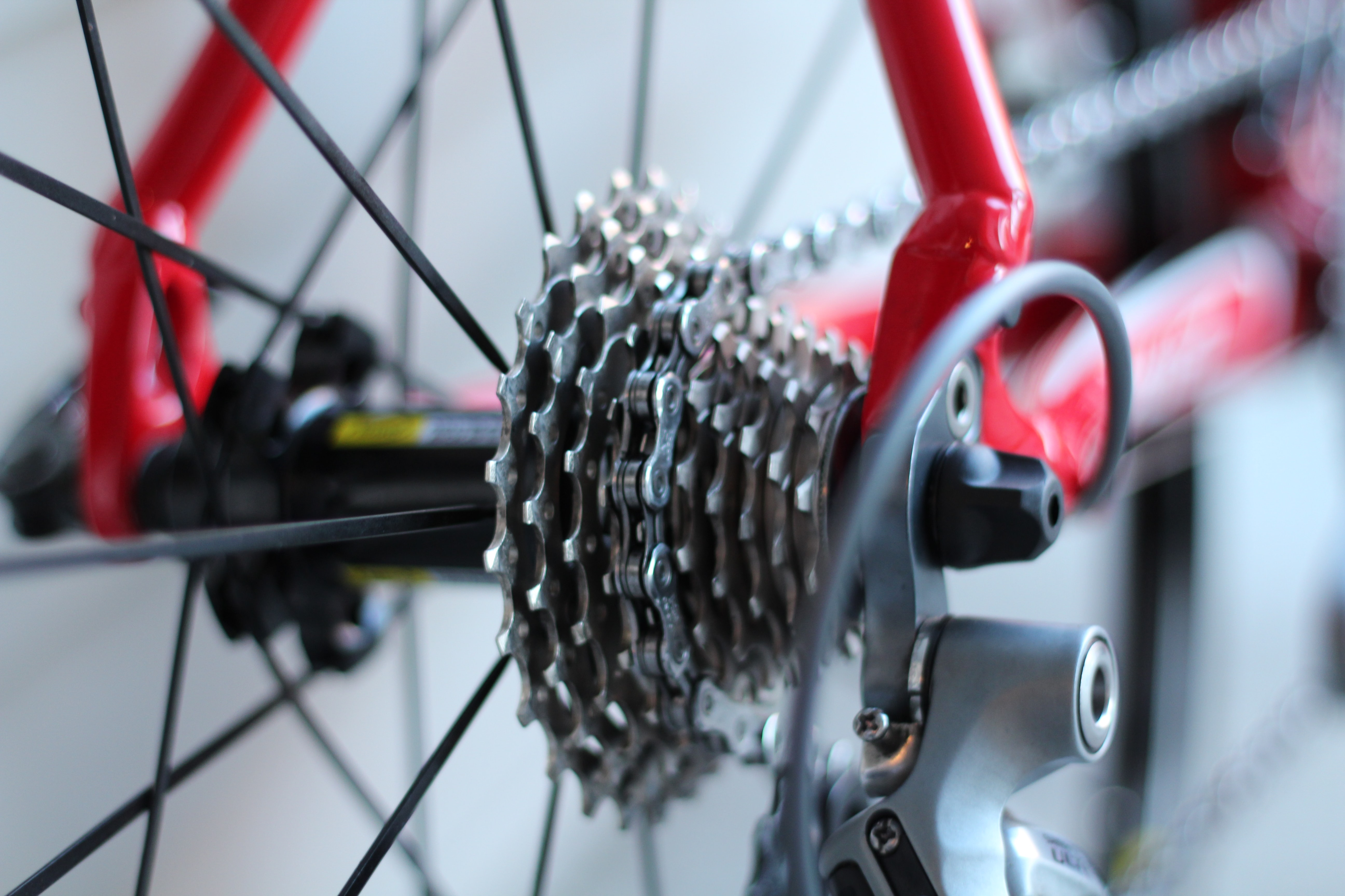 selective focus photo of bicycle part