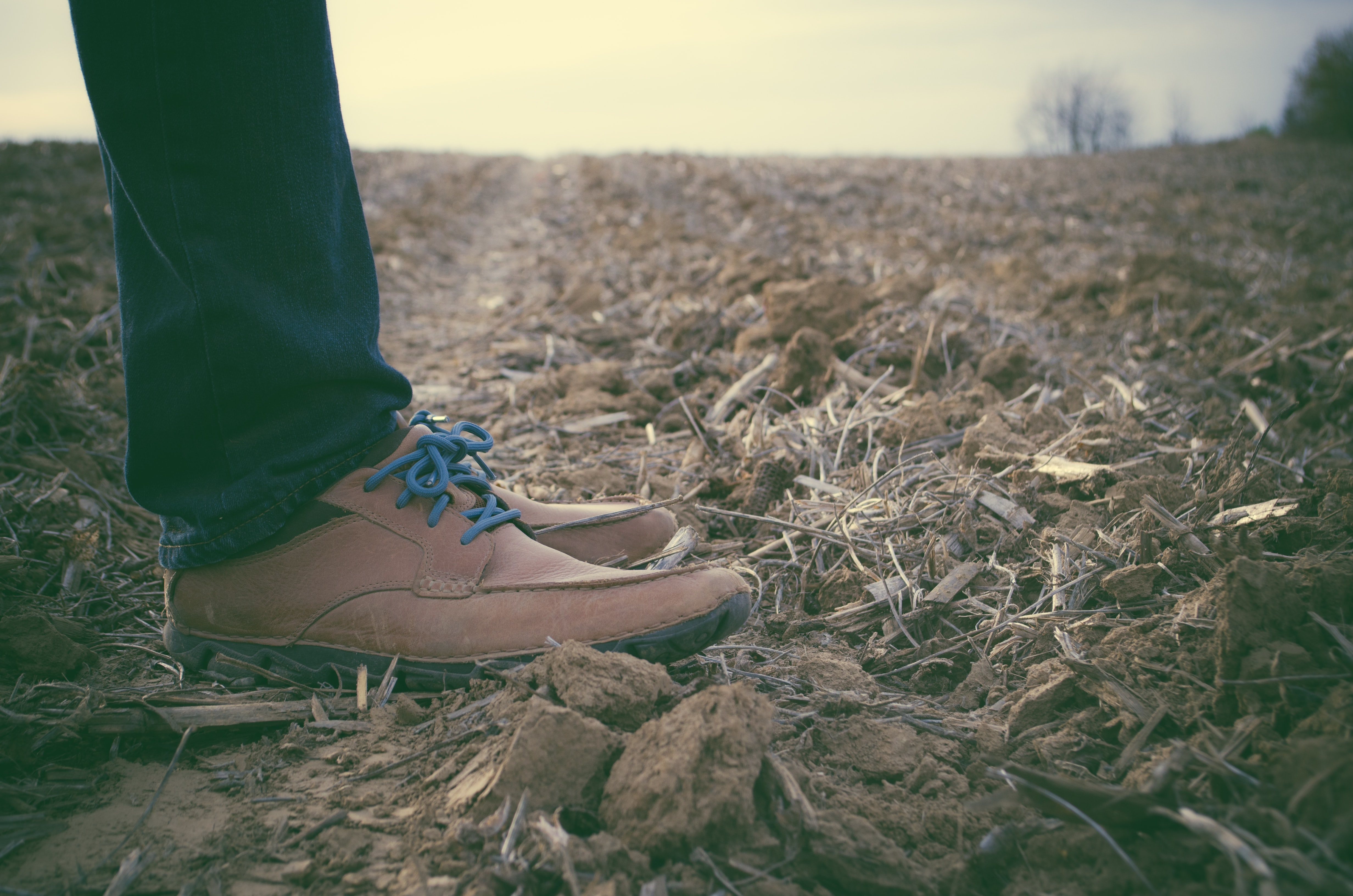 Low shot of person standing in a desolate farm field in brown shoes